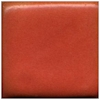 Small image of CG79 Satin Coral