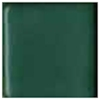 Small image of CG80 Satin Forest Green